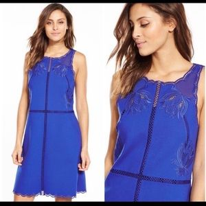 NWT Ted Baker Mid Blue Dress Ted Baker CODI